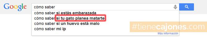 que_busca_la_gente_en_google_busquedas_graciosas_raras_29