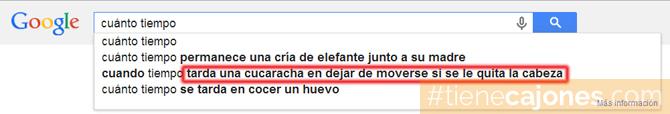 que_busca_la_gente_en_google_busquedas_graciosas_raras_30