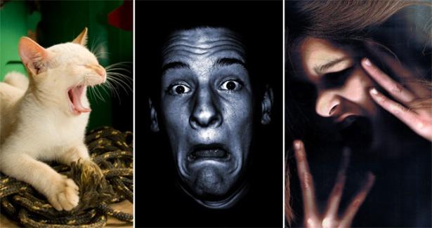 fobias_extranas_miedo