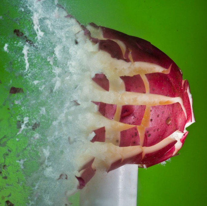 alan_sailer_fotografia_high_speed_rapida_congelados_manzana
