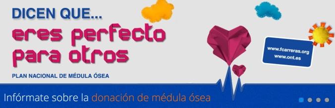 donacion_medula_osea_3