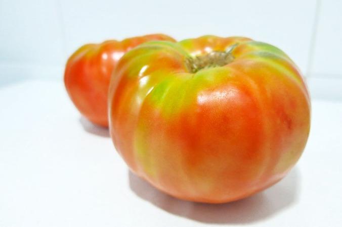 tomates_milhistorias_rais_fundacion-0399