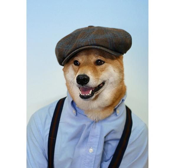 mascotas_famosas_instagram_perro_mensweardog_11
