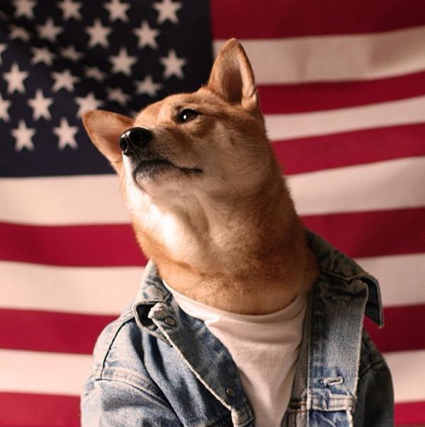 mascotas_famosas_instagram_perro_mensweardog_7