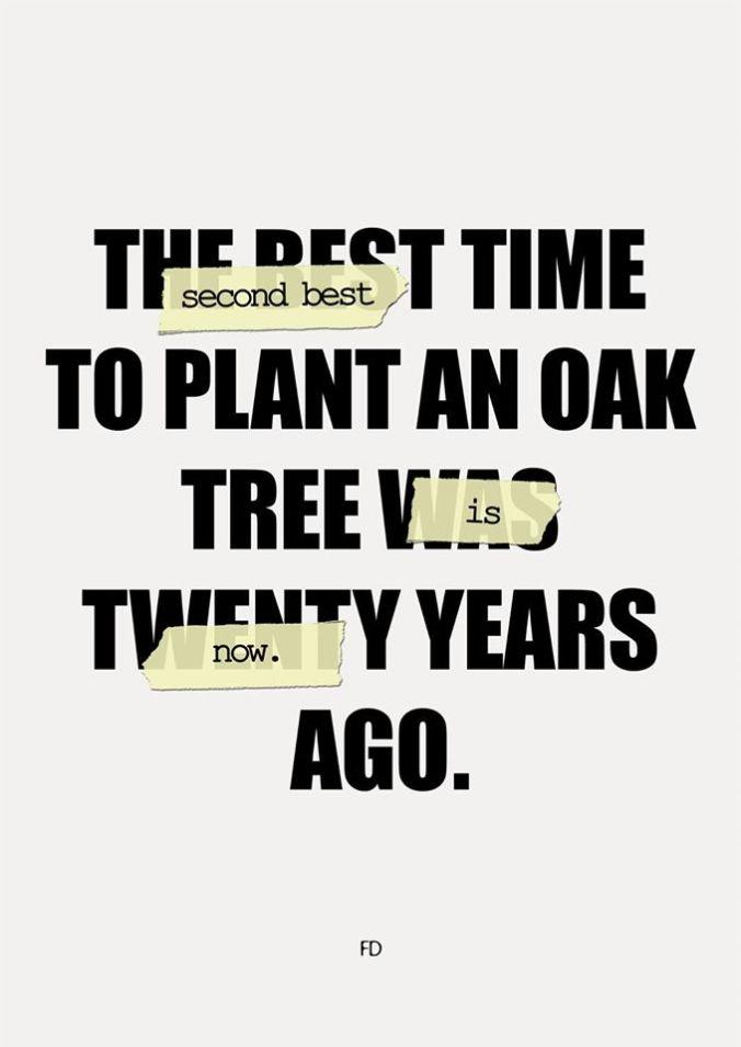 El mejor momento para plantar un roble fue hace veinte años.  El segundo mejor momento para plantar un roble es ahora.